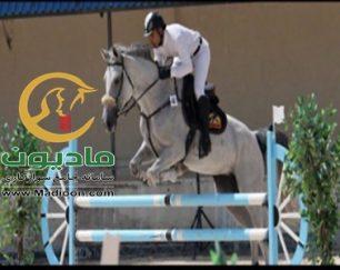 خرید اسب و فروش اسب_پاریس