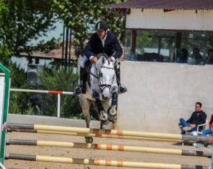 خرید اسب و فروش اسب_ کارما