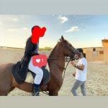 خرید اسب و فروش اسب_نریان کرد