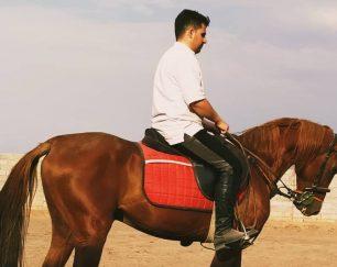 خرید اسب و فروش اسب_اسب ترکمن کره ی ارشک
