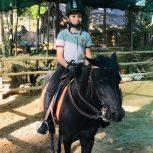 خرید اسب و فروش اسب_پونی منحصر بفرد